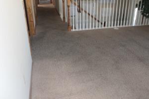 carpet after photos