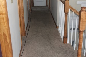 Carpet After Pictures