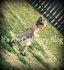 It's An Ordinary Blog