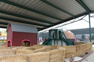 Johnson Family Farms 13