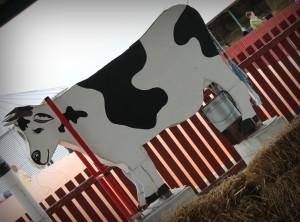 Johnson Farms Belton