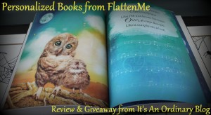 Book Review and Giveaway
