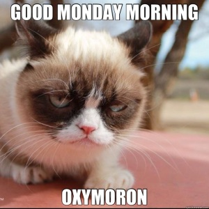 grumpy-oxymoron1